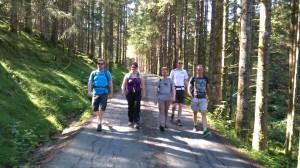 Lystig vandring langs fin skogsvei