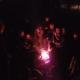 10-12 mennesker i mørket samlet rundt et bål hvor det grilles pølser